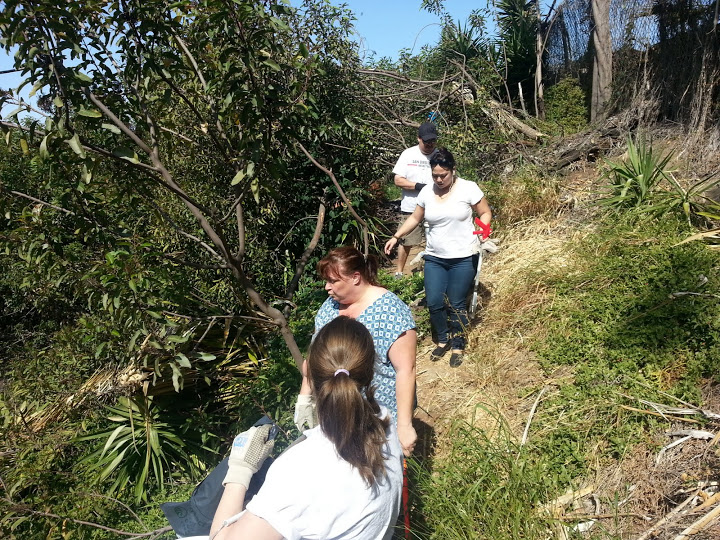 Volunteers in canyons are an essential part of the Creek to Bay Cleanup