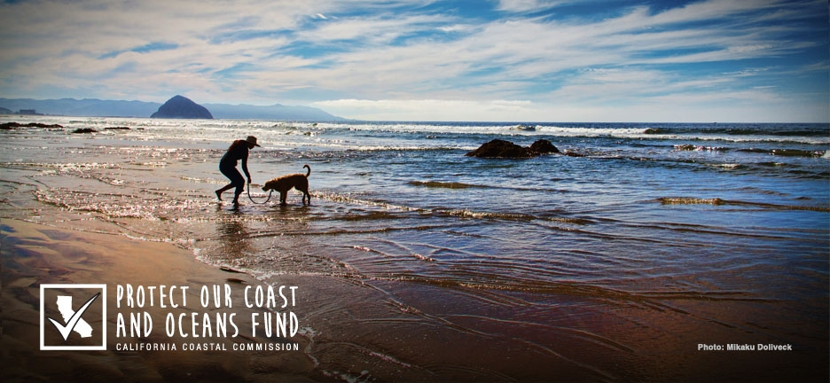 Protect our coast and oceans for all of us, including our furry friends who love to enjoy some time at the beach.