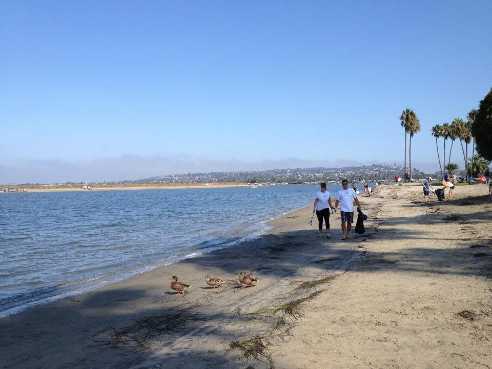 Cleanups protect our beautiful beaches, oceans, and we bet these ducks appreciate them, too!