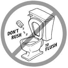 Dispose of drugs properly! Flushing them pollutes the water supply.