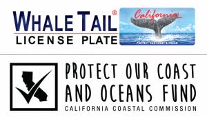 Coastal Commission's Whale Tail Grants Program