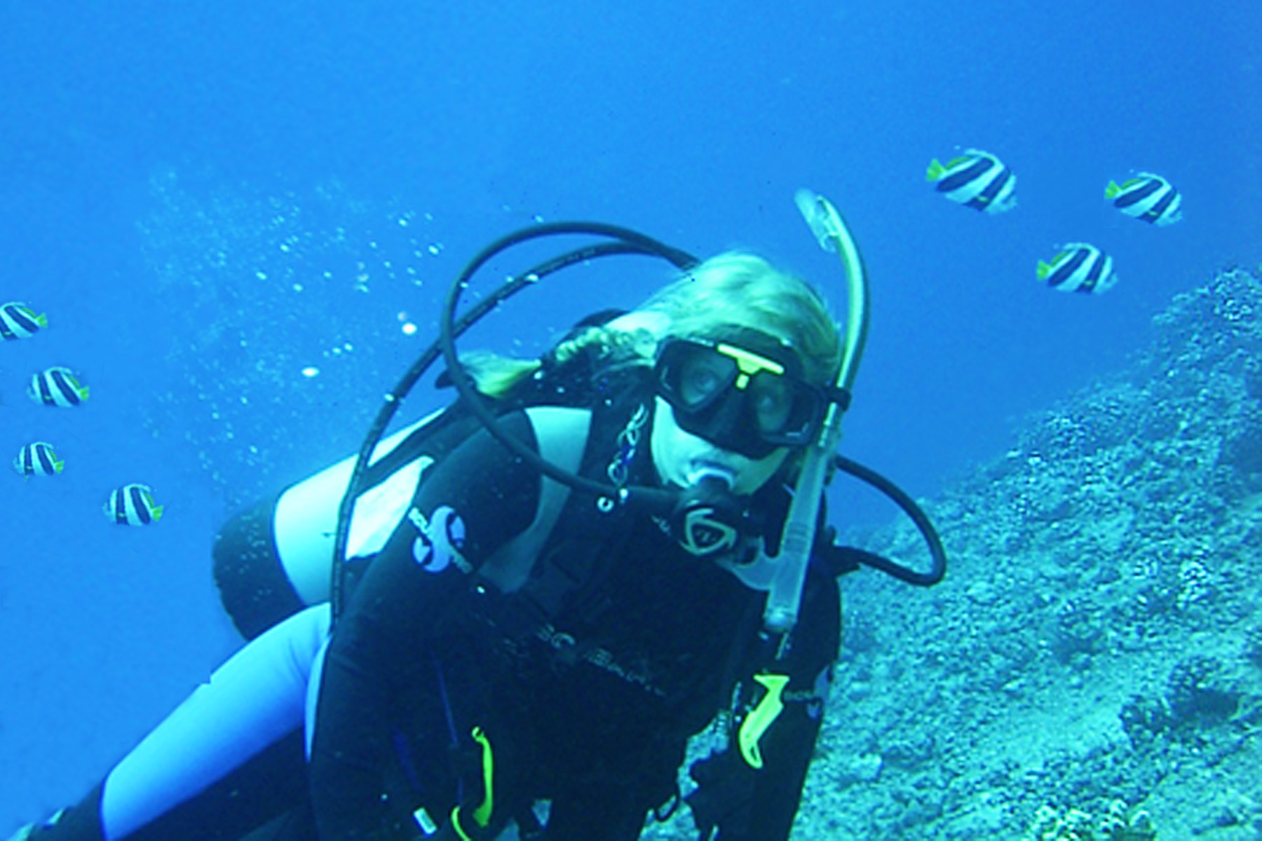 Pauline's other passion besides working at ILACSD is scuba diving in tropical waters and traveling to exotic destinations.