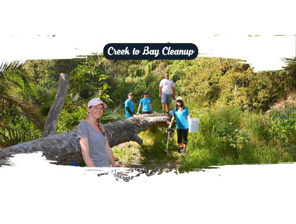 Creek to Bay 2020